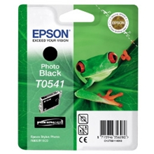 Epson Ink Photo T0541 Black C13T05414010
